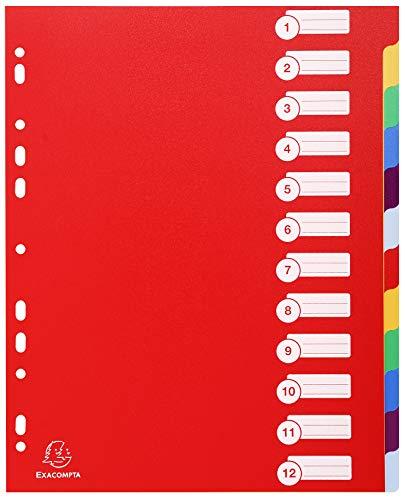 Exacompta - Réf. 4812E - Intercalaires Rigides Opaques 12 Positions - Format A4 Maxi - Polypropylène 30/100ème - Couleurs Assorties