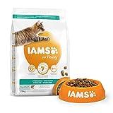 IAMS Vitality - Croquettes Premium Chats stérilisés - savoureuses complètes équilibrées - Favorise Croissance et Vitalité - Au saumon frais - Sans OGM colorant arôme artificiel - Sac refermable 1,5 kg