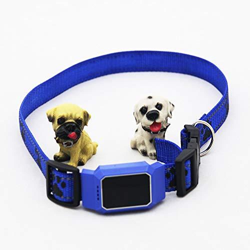 COL PETTI Pet Tracker, Impermeable Mini Perro Gato Ajustable Collar De Cierre Remoto GPS Rastreadores Magnéticos para El Perro Tracker Ideal,Blue