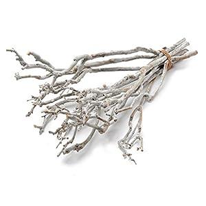 Zweige Zum Aufhangen Dein Wohntrend De