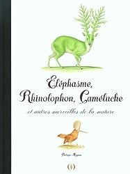 Éléphasme, Rhinolophon, Caméluche et autres merveilles de la nature