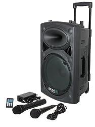 Ibiza 15-6018 Mobile Beschallungsanlage 25 cm (10 Zoll) mit USB-MP3, BT, REC, VOX, 1 VHF und 1 Kabelmikrofon