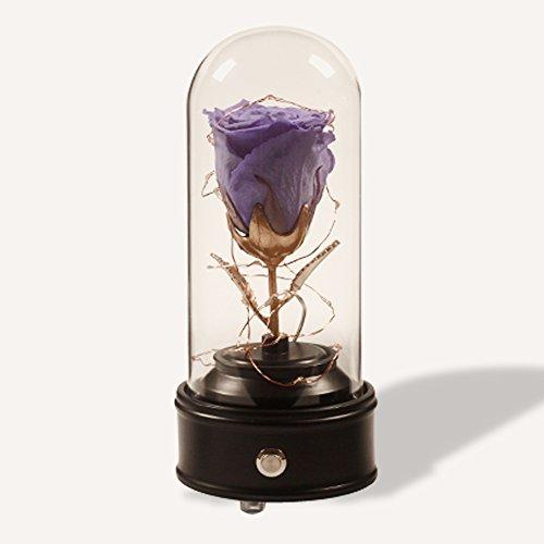 Ewige lebensblume,Lebe für immer rose,Die schöne und das biest rose,Ewige blume Geschenk] Bluetooth Lautsprecher Die music box,Blumen Für frau,Liebhaber,Freundin,Hochzeitstag,Geburtstagsgeschenk.-D 4x10inch