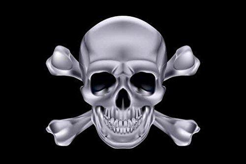 U24 Fahne Flagge Pirat Totenkopf Silber Bootsflagge Premiumqualität 20 x 30 cm