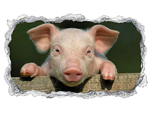 3D Wandtattoo Tier rosa Schwein Ferkel lustig Ohren Tapete Wand Aufkleber Wanddurchbruch sticker selbstklebend Wandbild Wandsticker Wohnzimmer 11P1313, Wandbild Größe F:ca. 140cmx82cm