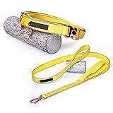NYJ Verstellbarer Doppel-Hundekoppler Kein Verwicklung aus Nylon-Haustier-Trainer-Leinen-Splitter (Farbe : B, größe : S)