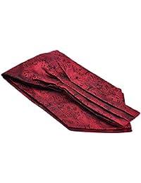 Zoylink Men's Business Ascot Floral Jacquard Classic Cravat Tie Ascot Tie