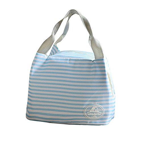 COLORFUL Leichte Kühltasche ,Lunch Tasche, Isoliertasche,Isolierte Leinwand Streifen Picknick Tragetasche, thermische tragbare Lunch Bag (F) (Leinwand Tote Leicht)