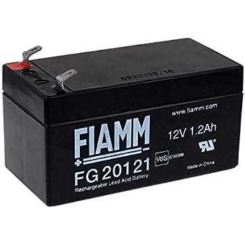 FIAMM Batterie au plomb rechargeable FG20721 Vds: Amazon