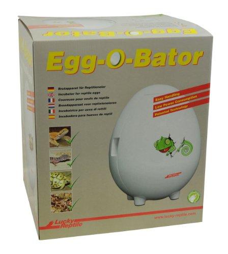 Lucky-reptile-Egg-O-Bator