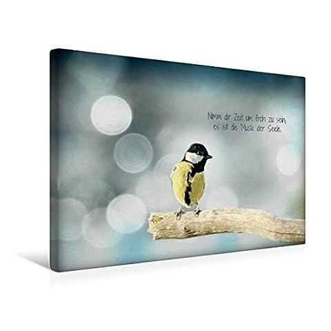 Premium Textil-Leinwand 45 cm x 30 cm quer, Irischer Segenswunsch und Kohlmeisenbaby | Wandbild, Bild auf Keilrahmen, Fertigbild auf echter Leinwand, ... Meisenbaby auf dem Ast (CALVENDO Tiere)