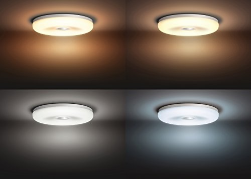 Plafoniere Philips Hue : Philips hue struana lampada da soffitto con telecomando dimmer switch