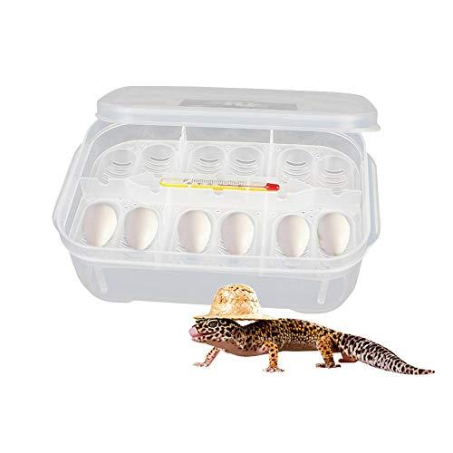 per Incubadoras para Huevos de Reptiles Cajas de Almacenamientos para Huevos de Mascotas Pequeñas Cajas de Cría 12 Compartimentos