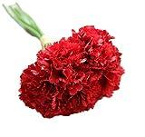 Lumanuby 1 Set Kunstblume Imitation Seidentuch Gefälschte Blumen Pure Color lebensechte Nelken Form Schöne Deko Wohnaccessoires für Schlafzimmer Salon Hotel Schreibtisch, Rot
