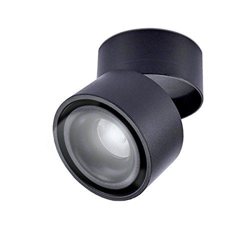 LANBOS 10W plafonnier spot LED downlight,Aangle du corps de lampe réglable, Plafonnier d'intérieur,10 * 10 * 10cm (Noir+Blanc Froid)