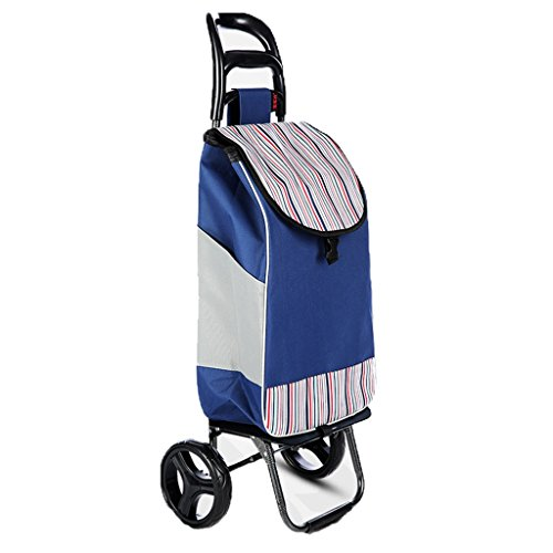 FXJ Staircase Shopping gepäck Faltbare Tragbare gepolsterte Wasserdichte Tasche Mute Rad Trolley warenkorb kann 35 kg Gewicht (Farbe : G)