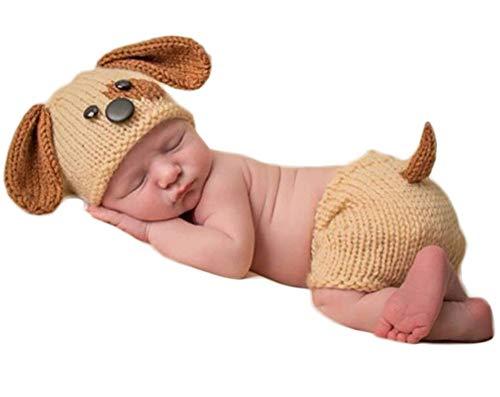 Neugeborenes Baby Mädchen häkeln Kostüm Outfits Fotografie Requisiten niedlichen Hund Hut+Hose 0-6 Monate (Niedlichen Hund Und Baby Kostüme)