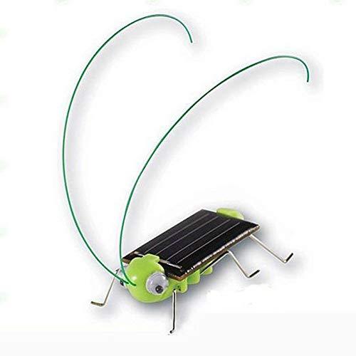 Gfjhgkyu Nette und Reizende Solarenergie Heuschrecken Insekten Kinder Scherzt Neuheit Pädagogisches Spielzeug