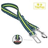 TapTap Premium Hundegurt fürs Auto in auffälliger Farbe und reflektierend - Sicherheitsgurt - Anschnallgurt Hund Auto mit elastischer Rückdämpfung.