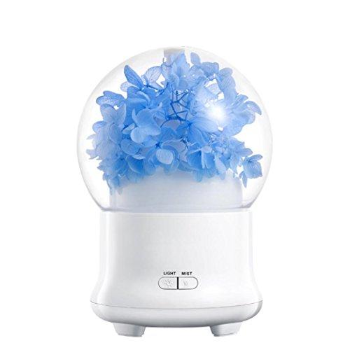 Preisvergleich Produktbild Aromatherapie Maschine Bunte Atmosphäre Nachtlicht , Jaminy Getrocknete Blume Led Ultraschall Luft Luftbefeuchter Öl Aroma Diffusor Duft Maschine (C)