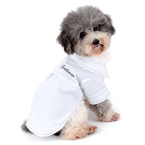 Ranphy 2018New Herren-T-Shirt für kleine Hunde/Katzen, Botton Woven Shirt Welpen Kleidung Größe (s-xxl für kleine ()