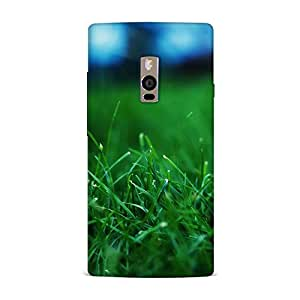 OnePlus 2 Case, OnePlus 2 Hard Protective SLIM Cover [Shock Resistant Hard Back Cover Case] for OnePlus 2 -21M1579SUB