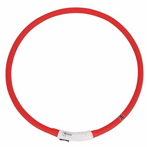 iiniim Haustier LED Halsband LED-Leuchthalsband für Hunde und Katzen Rot Einheitsgröße