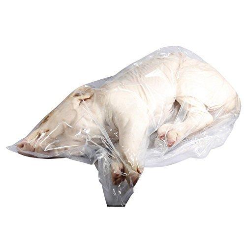 Ganze Spanferkel Dose, Frische 8 -10kg