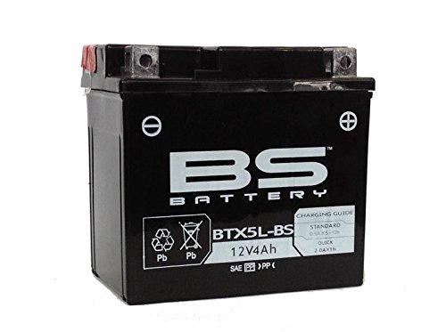 BS Battery 300618 Motorrad-Batterie, Schwarz (Preis inkl. EUR 7,50 Pfand)