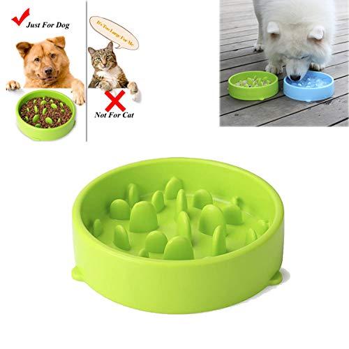 Tineer Dog Slow Feeder Bowl, Rutschfester Gummi-Spaß-Futterschüssel-Labyrinth Slow Eating Interaktiver Feeder-Blähstopp für kleine mittelgroße Hunde (Grün) -