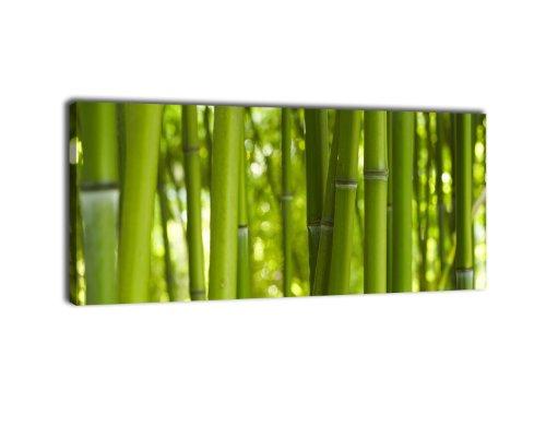 Leinwandbild Panorama Nr. 57 Bambusdikicht 100x40cm, Keilrahmenbild, Bild auf Leinwand, Kunstdruck Bambus Wald Asia