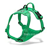 Dunyue Upgraded Straps Reflective No Pull Dog Harness Easy To Put On & Take Off Colors Adjustable Vest Dog (Color : Deep Green)