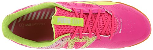 Puma Evospeed Sala Chaussures de football Rose