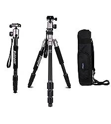 Fotopro C5i-2330c Kamerastativ Komplett-Set mit Professional Stabiler Kopf, Klassisch Titanium ...