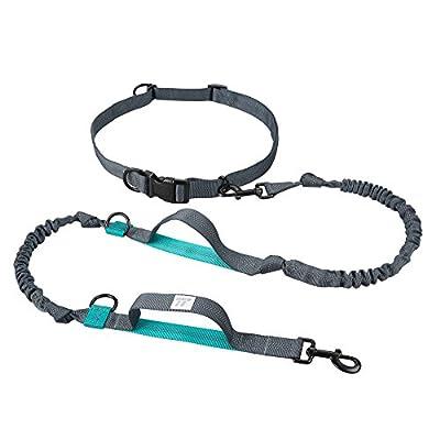 Hundeleine Doppelleine TaoTronics Hände Frei Führleine Freihand Trainings-Gürtel mit doppeltem Gummiseil und Haltegriff für alle große und kleine Hunde – zum Joggen, Spazieren, Wandern, Radfahren