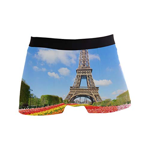ALARGE Men's Boxer Briefs, Paris Eiffel Tower Flower Short Underwear Soft Stretch Underpants for Men Boys S-XL -