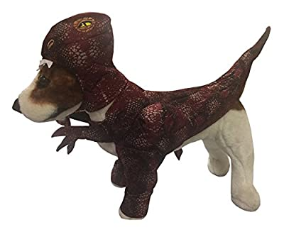 Animal Planet PET20109 Raptor Dog Costume from pupproperty dog clothing