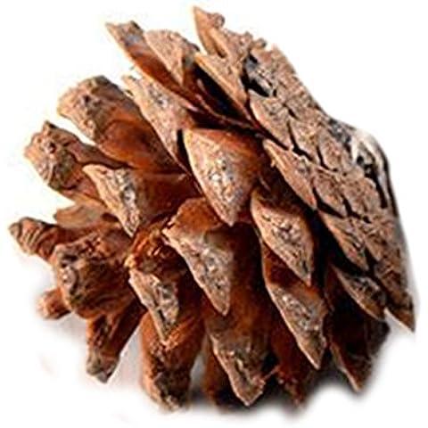 Árbol de Navidad Bolas colgantes Decoración de los conos de piña celebración de días festivos de