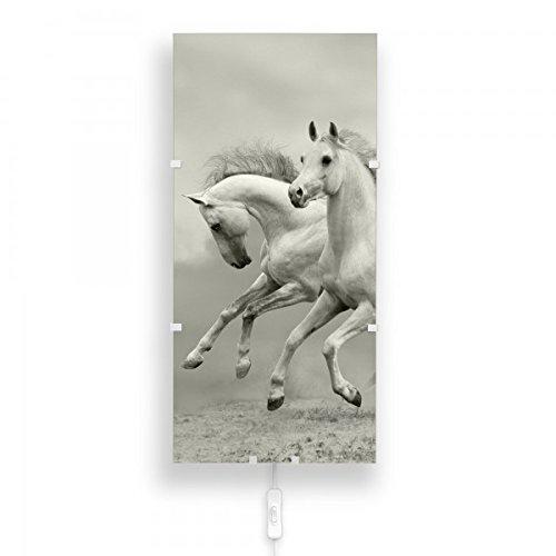 banjado - Wandlampe Wandleuchte 26cmx56cm Design Lampe LED mit Wechselscheibe und Motiv Wilde Pferde SW, Wandlampe mit 2x 6W LED Leuchtmittel
