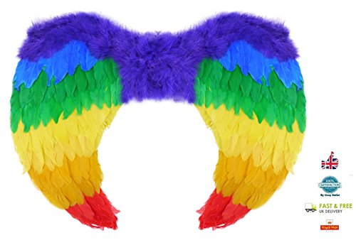er Angel Wings for Carnival, Festival, Fancy Dress, Gay Pride - Unisex - One Size Fits All by Lizzy® ()