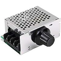 Peanutaoc - 1 termostato regulador de Voltaje y Velocidad de Motor de 4000 W 220 V SCR