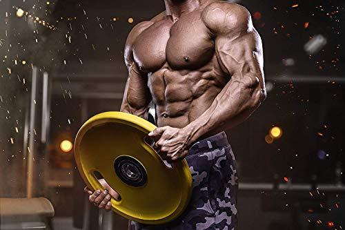 500g – 1000g L-Arginin HCL, Reines Pulver, Durchblutung, Pump Pre-Workout Booster