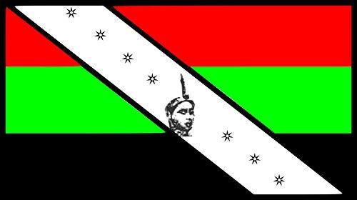 magflags-bandera-large-egbe-omo-yoruba-narodnej-asociacie-potomkov-jorubov-v-severnej-amerike-bander