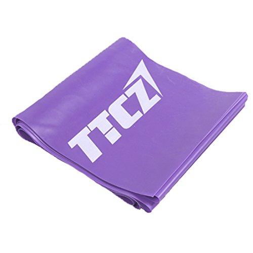 Andux Zone Fitnessbänder Pilates Yoga Widerstand Übungsband TLD-04 (Lila (8 lbs)) 4-zonen Expander