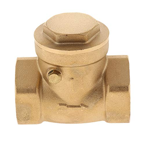 FLAMEER Unidirektionaler Rückschlagventil Rückschlagklappe Rückflussverhinderer, Ideal für Einweg Strömungsrohr Flüssigkeit - DN25 -