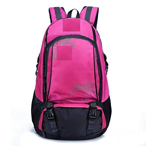 LQABW Professionista Spalla Outdoor Leisure Borsa Uomini E Donne Universale Paio Di Modelli Multi-Purpose Spalla Escursionismo Zaino 40L,Green Pink