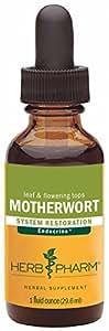Herb Pharm Motherwort - 1 oz