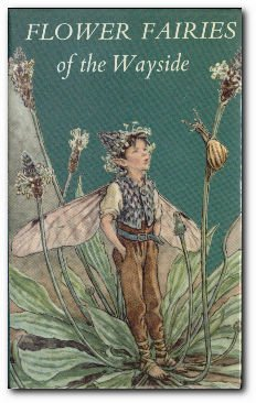 Flower fairies of the wayside : poems and pictures