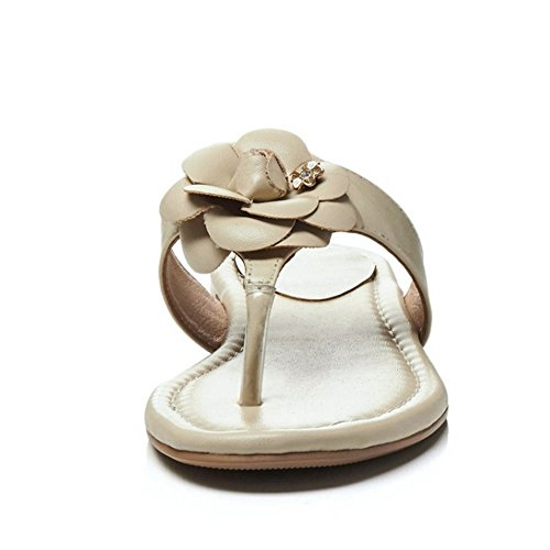 TAOFFEN Femmes Mode Tongs Sandales Plates Clip Toe Slide Ete Chaussures De Fleur Abricot