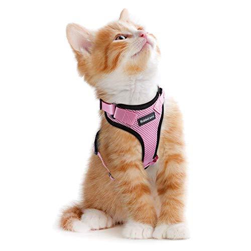 rabbitgoo Katzengeschirr Ausbruchsicher Geschirr Katze Kleine Verstellbar Katzengarnitur Welpengeschirr Geschirr für Katzen Kitten kleine Hunde Chihuahua Cat Harness Rosa XS